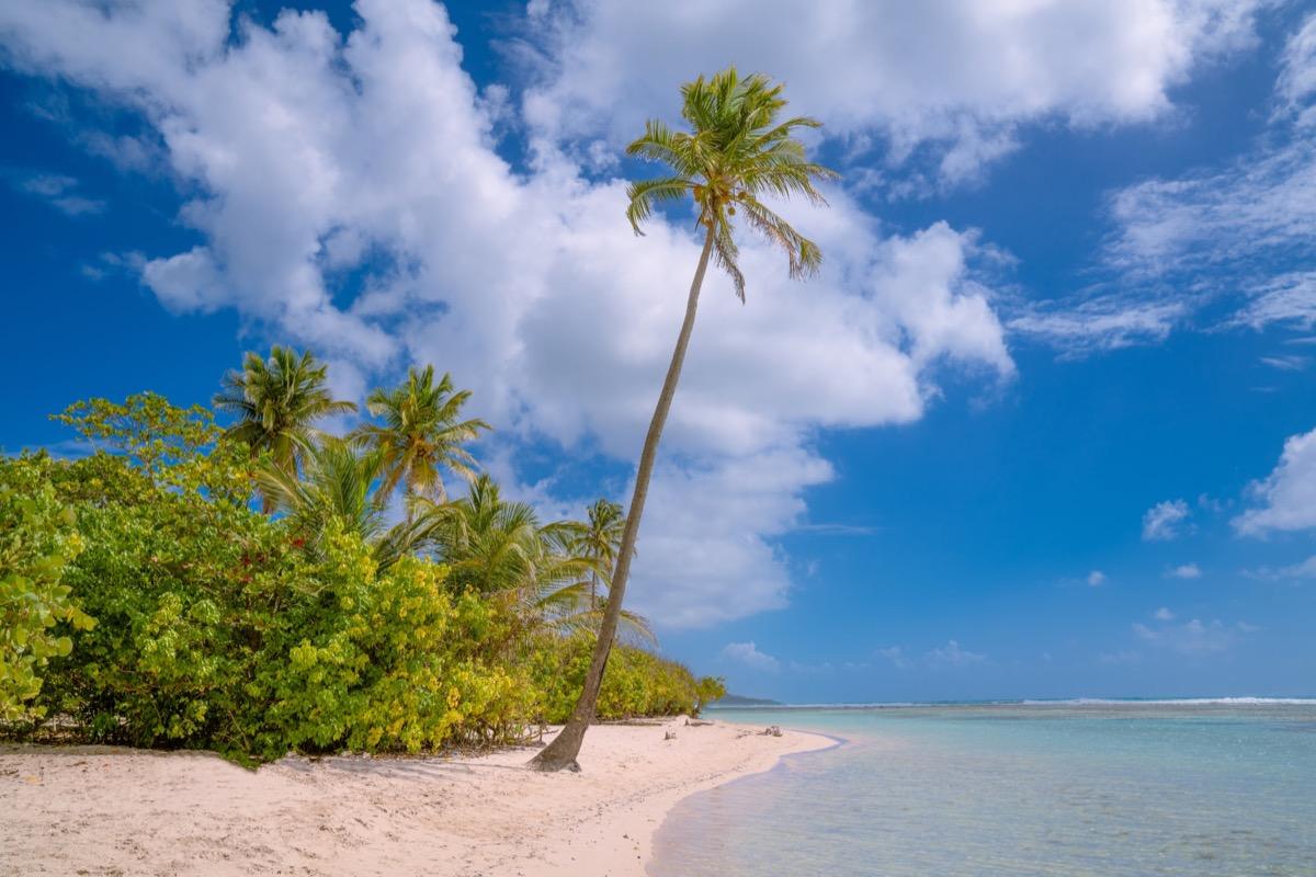 カリブの青い海